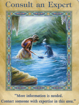 Consult an Expert Card Extended Description - Mermaids and Dolphins Oracle Cards by Doreen Virtue