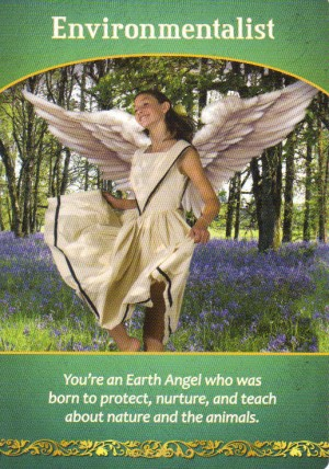 Environmentalist Oracle Card Extended Description - Life Purpose Oracle Cards by Doreen Virtue
