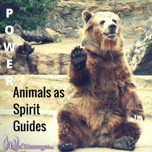 Power Animals as Spirit Guides