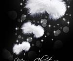 Christmas Angel Wings