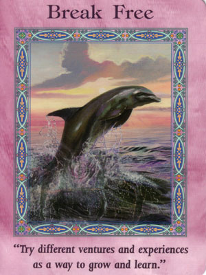 Break Free Card Extended Description - Mermaids and Dolphins Oracle Cards by Doreen Virtue