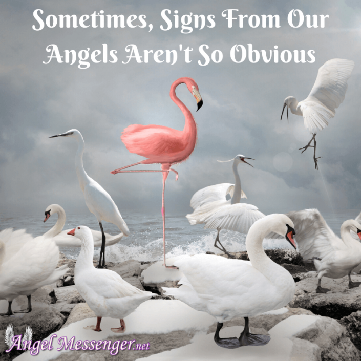 Interpreting Signs from Your Angels