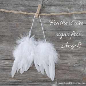 Feathers are Signs from Angels