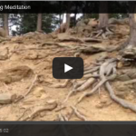 Mile High Grounding Meditation I Angel Messenger