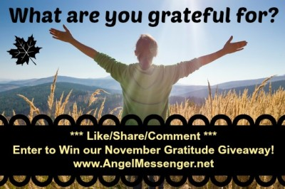 November Gratitude Giveaway 2013