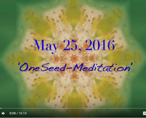 OneSeed Event Post May 2016
