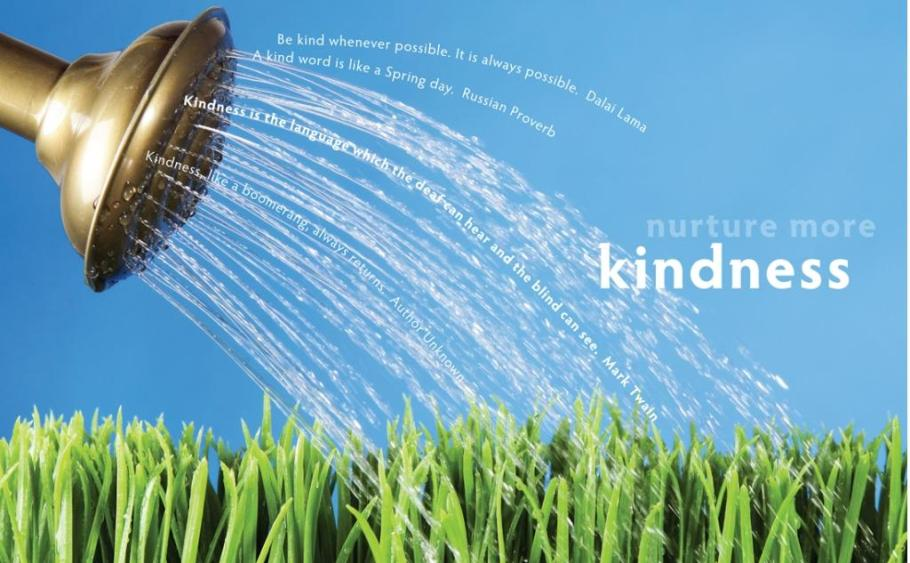Feathers of Kindness – Nurture More Kindness